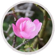 Desert Rose II Round Beach Towel
