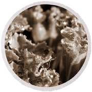 Details In The Dew Sepia Round Beach Towel