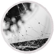 Dew Covered Web Round Beach Towel