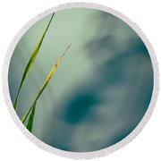 Dew Drop Round Beach Towel