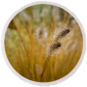 Dew On Ornamental Grass No. 4 Round Beach Towel