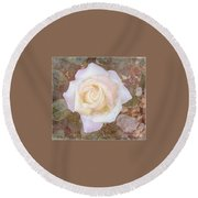 Dewy Dawn Peace Rose Round Beach Towel