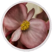 Dewy Pink Painted Begonia Round Beach Towel