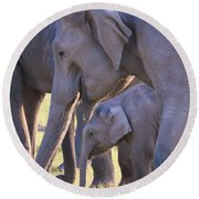Dhikala Elephants Round Beach Towel
