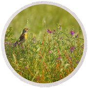 Dickcissel And Flowers Round Beach Towel