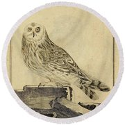 Die Stein Eule Or Church Owl Round Beach Towel