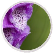 Digitalis Abstract Round Beach Towel by Anne Gilbert