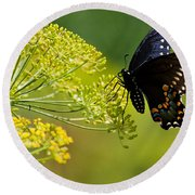 Dill And The Butterfly Round Beach Towel