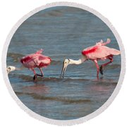 Dining Duo Round Beach Towel