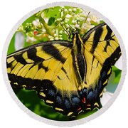 Dinner For The Swallowtail Round Beach Towel