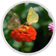 Dinner Table For Two Butterflies Round Beach Towel