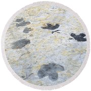 Dinosaur Tracks Round Beach Towel