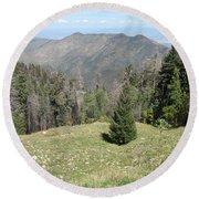 Distant View - Mount Lemmon Round Beach Towel