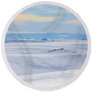 Distant View Of A Musk Ox And Snow Round Beach Towel
