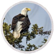Distracted Round Beach Towel