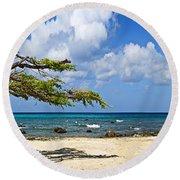 Divi Divi Tree Caesalpinia Coriaria Round Beach Towel by Panoramic Images