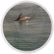 Diving Dolphin Round Beach Towel