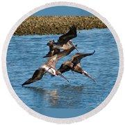 Diving Pelicans Round Beach Towel