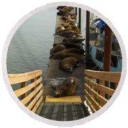 Dock Sea Lions Astoria Or 1 A Round Beach Towel