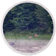 Doe And Fawn In The Early Morning Round Beach Towel