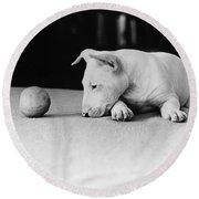 Dog And Ball Round Beach Towel