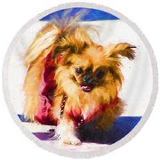 Dog Daze 3 Round Beach Towel