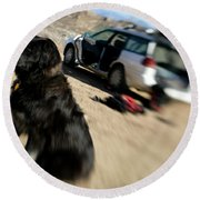 Dog In Front Of A Climbers Car Round Beach Towel