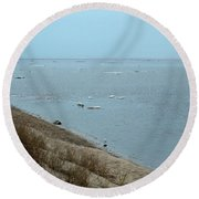 Dog In Icy Water Round Beach Towel