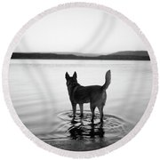 Dog Looking Over Abiquiu Reservior Round Beach Towel