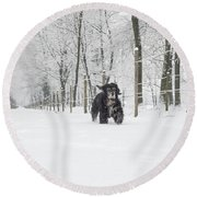 Dog Running In The Snow Round Beach Towel