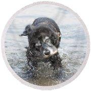 Dog Shake Round Beach Towel