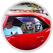 Doggies In The Window Round Beach Towel