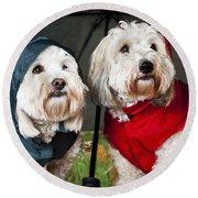 Dogs Under Umbrella Round Beach Towel