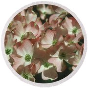Dogwood 1 Round Beach Towel