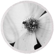 Dogwood Black And White 2 Round Beach Towel