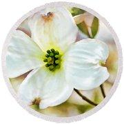 Dogwood Blossom - Digital Paint I  Round Beach Towel