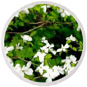 Dogwood In The Wind Round Beach Towel