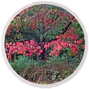 Dogwood Leaves In The Fall Round Beach Towel