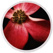 Dogwood Macro Round Beach Towel