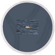 Dolphin At Sea Round Beach Towel