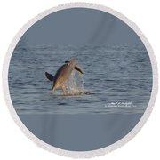 Dolphin I Mlo Round Beach Towel