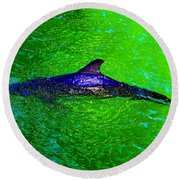 Dolphin In The Shallows Round Beach Towel