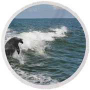 Dolphin In Waves Round Beach Towel