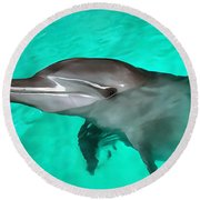 Dolphin Round Beach Towel
