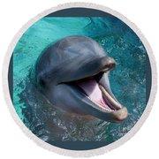 Dolphin Smile Round Beach Towel