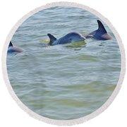 Dolphins 2 Round Beach Towel