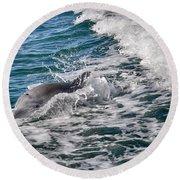 Dolphins Smile Round Beach Towel