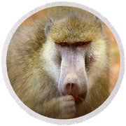 Dominant Male Baboon Round Beach Towel