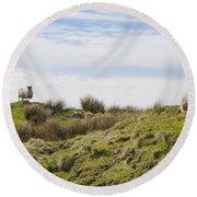 Donegal Sheep Round Beach Towel