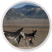 Donkeys In The Colorado Rockies Round Beach Towel